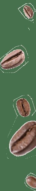 starters-united-concept-franchisable-service-cafe-in-devenir-franchiseur-grain-cafe-2